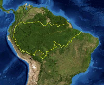 TUTKIJA: Amazonin sademetsä voi muuttua hiilipommiksi